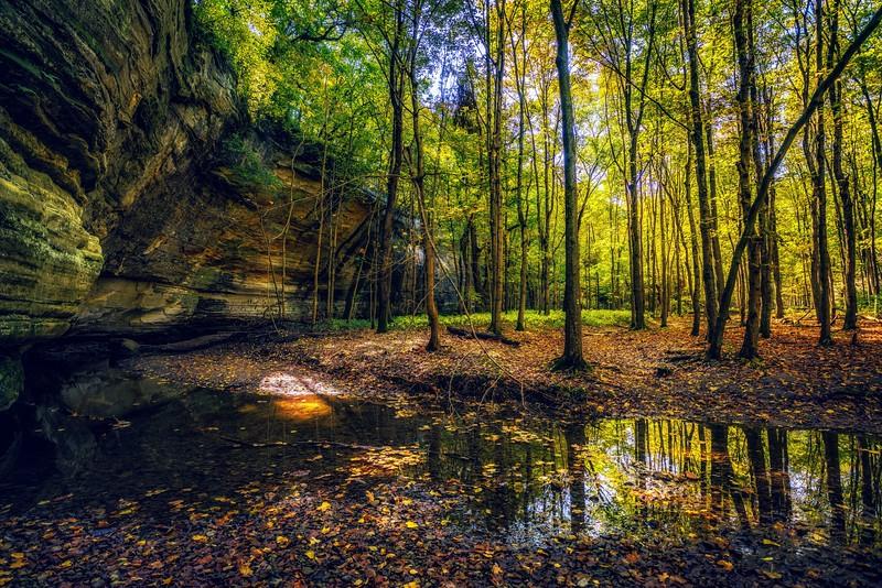 fall- (1 of 1)-3.jpg