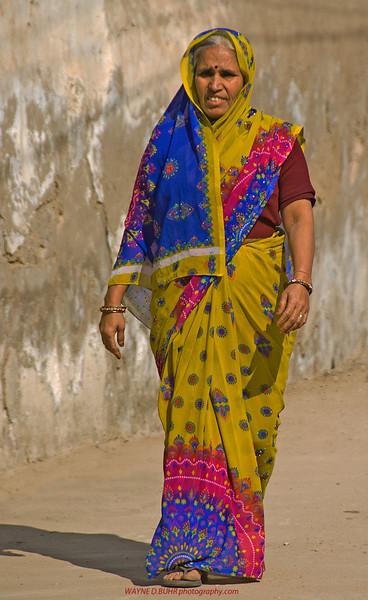 India2010-0204A-300A.jpg