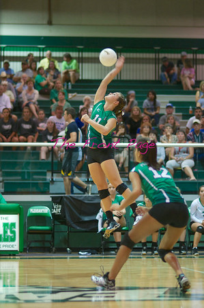 Volleyball '14