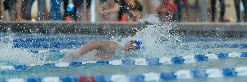 2018_KSMetz_Feb16_SHS Swimming_ State Prelims_NIKON D5_3128.jpg