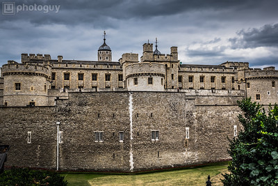 20140728_LION_LONDON (14 of 48)
