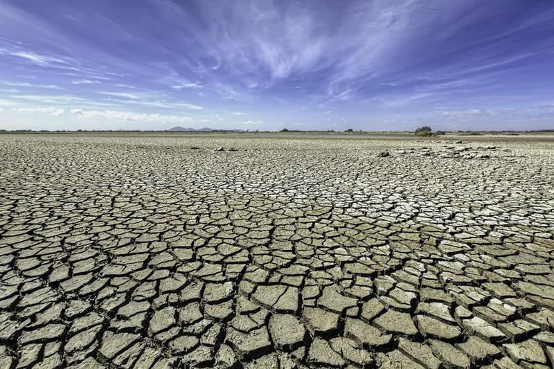 nib_climate_change_011.jpg