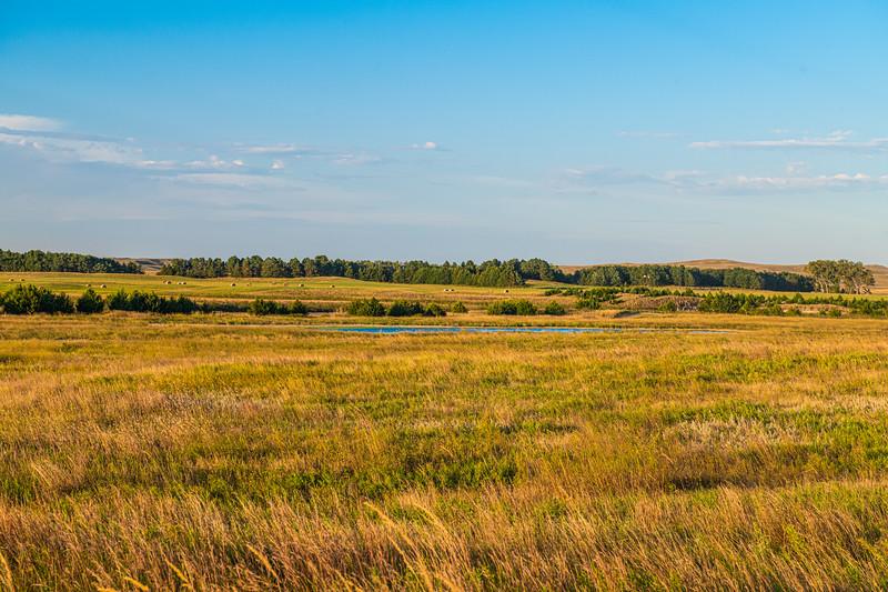 Horn Ranch-1439.jpg