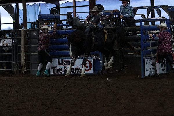 Friday Saddle Bronc and Bare Back