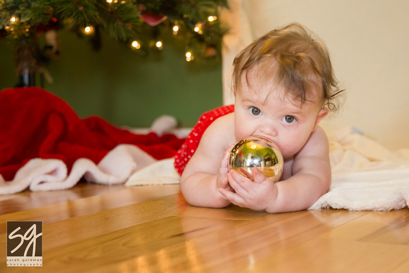 Christmas_card_photos_CharlestonSC (5).jpg