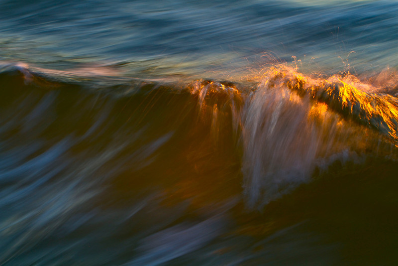 Motion of the Ocean #42