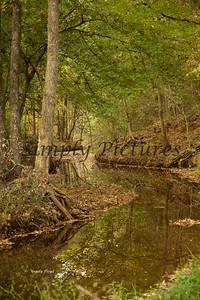 Banita Creek101