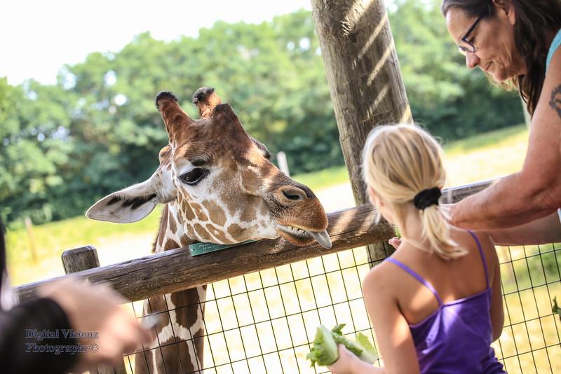 2016-07-17 Fort Wayne Zoo 277LR.jpg