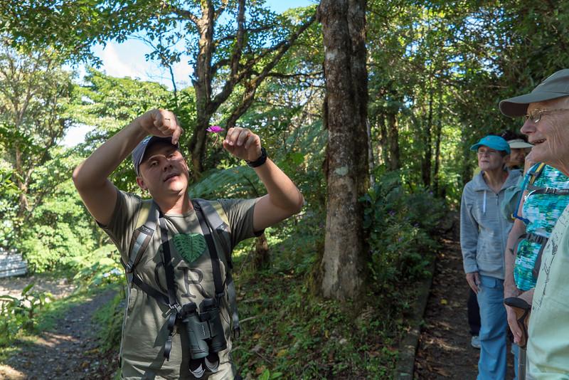 Costa Rica 2015-4020.jpg