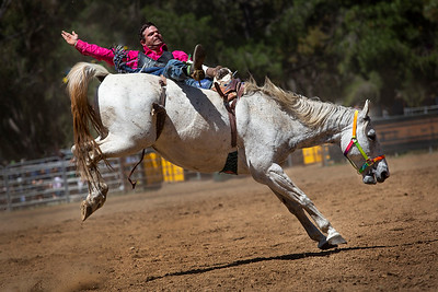 20181103 - Boddington Rodeo