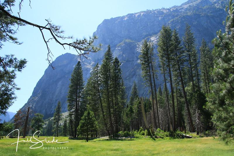 Yosemite 2018 -93.jpg