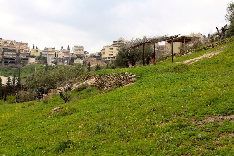 Nazareth Village, First Century recreation