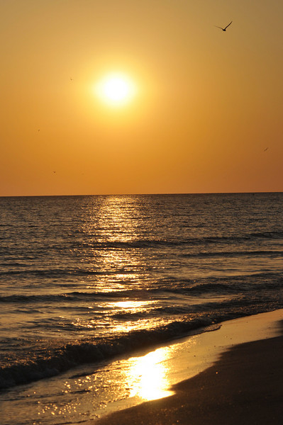 west end of Sanibel offers sunset views