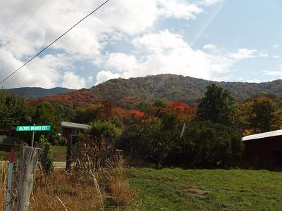 2007 Autumn