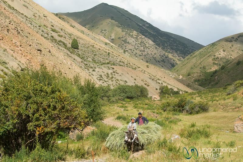 HeightsofAlay_Trek_Kyrgyzstan_16.jpg