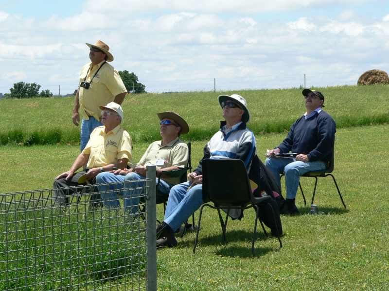 The flight judges