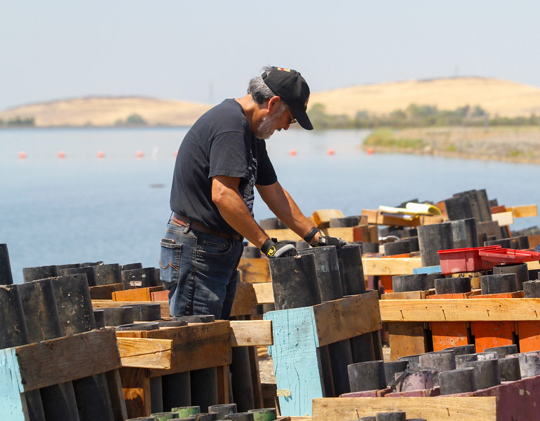 Firework producer with Pyro Spectaculars Richard Bryant arranges the racks with the tubes that will hold the fireworks July 3, 2017 at the Thermalito Forebay in Oroville, California.  (Emily Bertolino -- Mercury-Register)