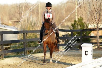 JenniferBorgoonRoyal Pain WP#20