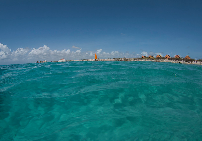 2011-Bonaire-760.jpg