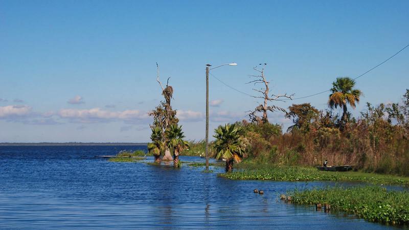 Lake Jesup Conservation Area