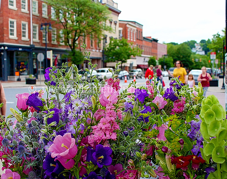 Easton Farmers Market, Easton, PA 6/8/2013