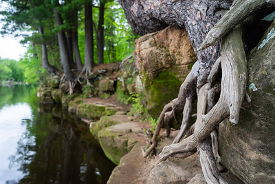 The Roots of St. Croix
