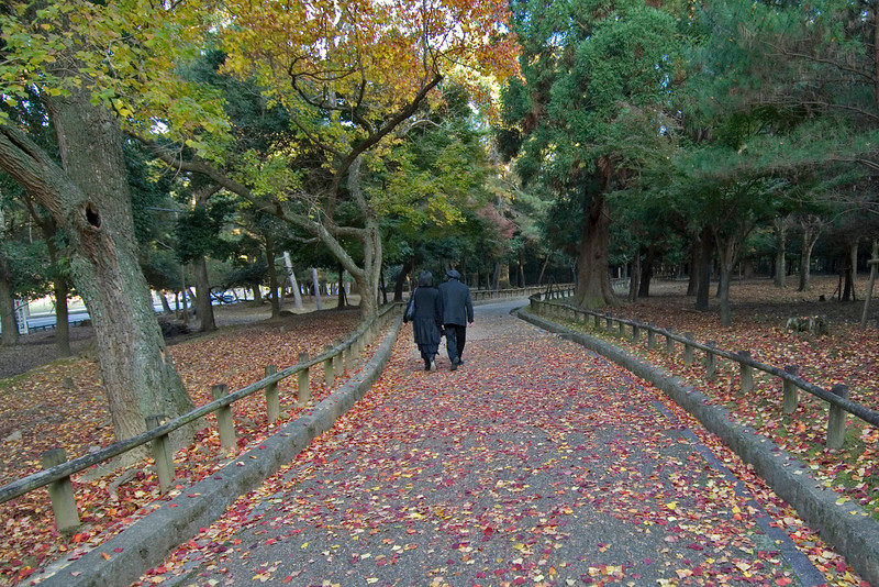 Couple wearing all-black strolling in Park in Nara, Japan