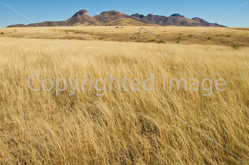 Arizona - Sonoita & Patagonia Region (Biking, Scenics)