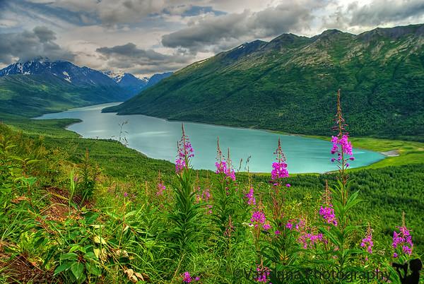 Alaska Travel Journal 2007
