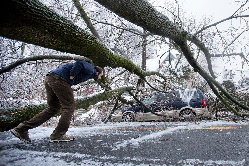 . A man inspects an ice covered downed tree that took out an utility line and landed atop a minivan, after a winter storm Wednesday, Feb. 5, 2014, in Philadelphia.  (AP Photo/Matt Rourke)