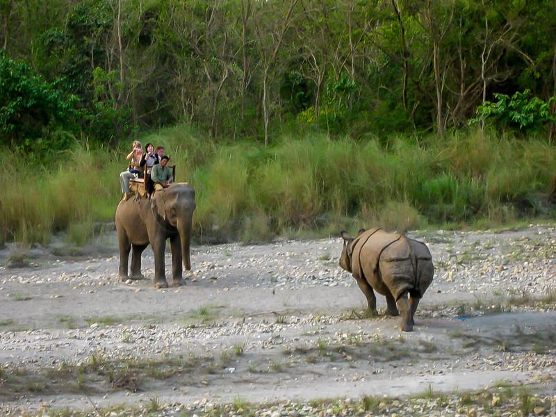 Chitwan 045.jpg