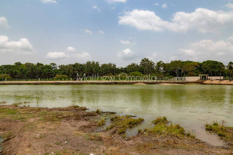 Crocodiles Lake in Yamoussoukro president palace Ivory Coast Cote d'Ivoire