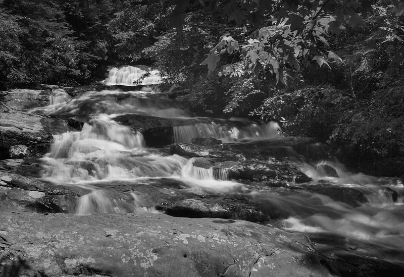 Mill Creek_0624.jpg