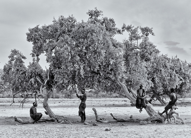 Women from the Arbore tribe under a tree.