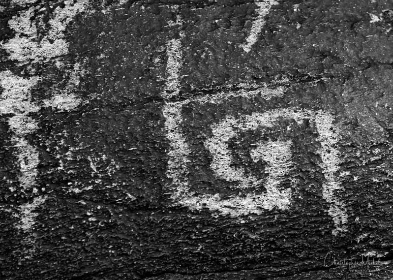 1-22-17218667Taliesin West - Frank Lloyd Wright.jpg