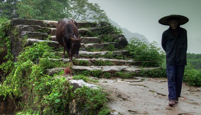 2012 china fisherman & old man w- cow-11.jpg