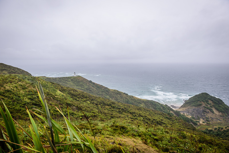 2018 KTM New Zealand Adventure Rallye - Northland (286).jpg