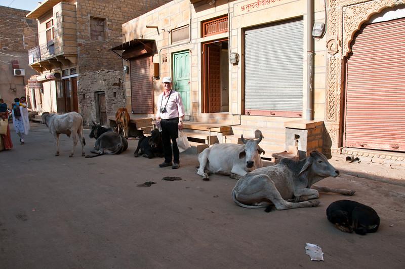 POW Day 5-_DSC3552- Jaisalmer.jpg