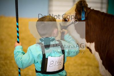 Cattle Grand Drive