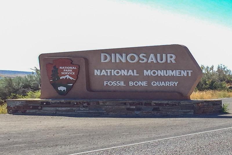 Dinosaur_2019_07.jpg