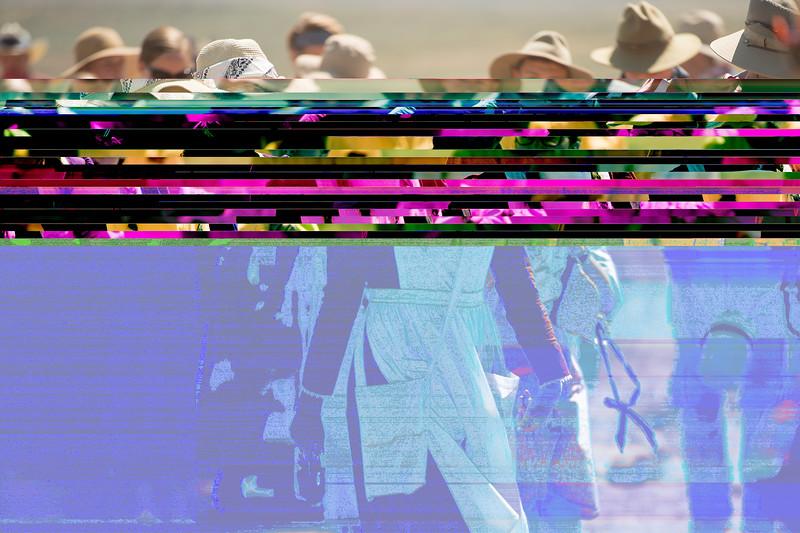 rodeo-2231.jpg