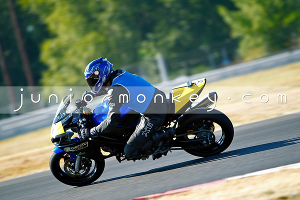#28 - Black Blue GSXR