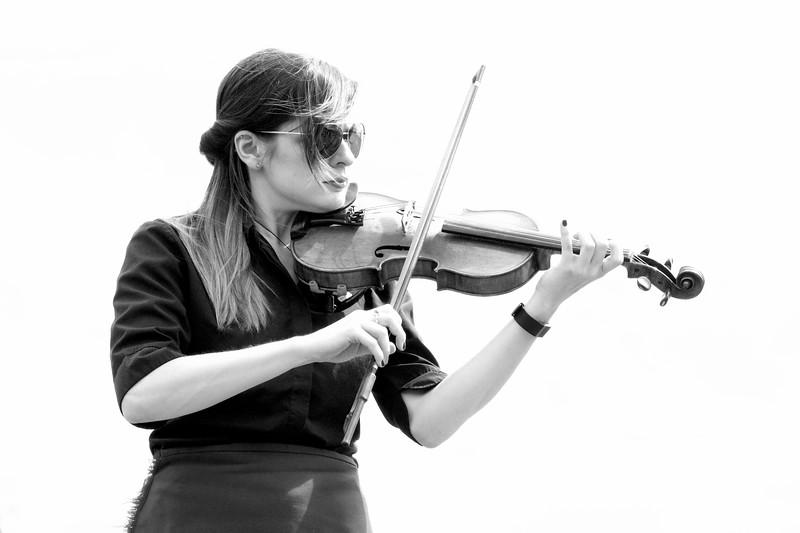 Gaorsach Fiddle