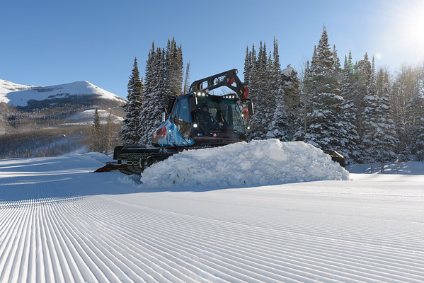 All Groomer Images
