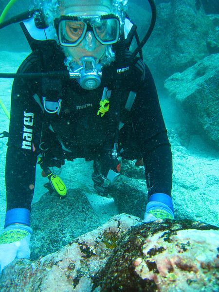Diving in the Galapagos (309 of 392)