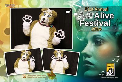 Langley Arts Alive Festival 2014