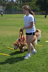 Putting on the Dog at Westridge School