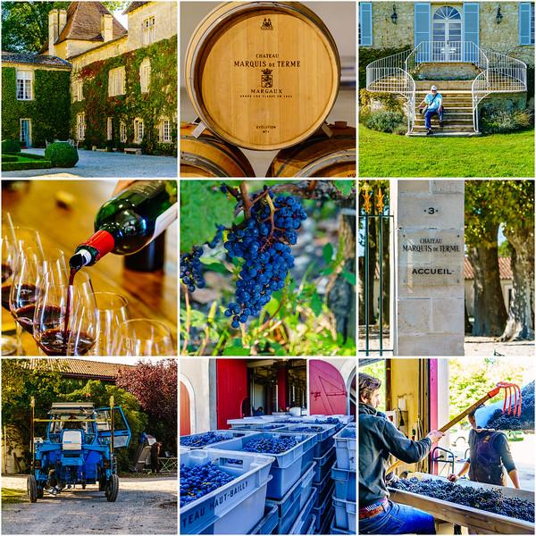 Day9-wine-tour-1.jpg