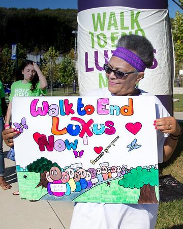 Lupus Walk 2017