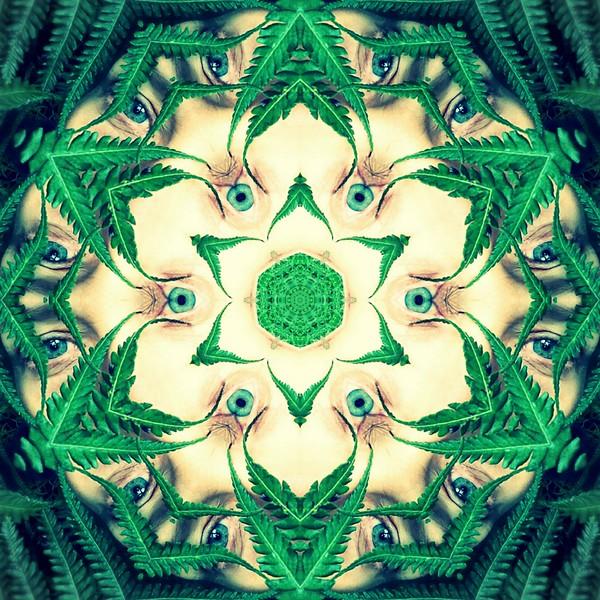 image%3A61361_mirror13.jpg
